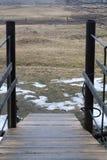Δασική κάθοδος γεφυρών αναστολής ποταμών βουνών στοκ εικόνα με δικαίωμα ελεύθερης χρήσης