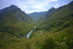 Δασική κοιλάδα ποταμών βουνών Στοκ εικόνες με δικαίωμα ελεύθερης χρήσης
