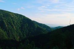 Δασική κορυφή υψώματος πέρα από την κοιλάδα στοκ εικόνα