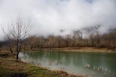 Δασική λίμνη με τη γέφυρα κατά τη διάρκεια της ηλιόλουστης ημέρας με τα χειμερινά δέντρα και τον μπλε νεφελώδη ουρανό Όμορφη φυσι Στοκ εικόνες με δικαίωμα ελεύθερης χρήσης