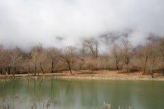 Δασική λίμνη με τη γέφυρα κατά τη διάρκεια της ηλιόλουστης ημέρας με τα χειμερινά δέντρα και τον μπλε νεφελώδη ουρανό Όμορφη φυσι Στοκ φωτογραφίες με δικαίωμα ελεύθερης χρήσης