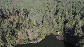 Δασική λίμνη με τους βράχους και την ξύλινη αποβάθρα απόθεμα βίντεο