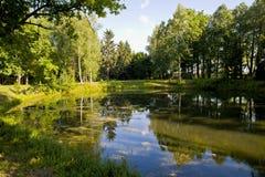 δασική λίμνη μικρή Στοκ Φωτογραφίες