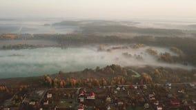 Δασική λίμνη στην ομίχλη πρωινού, στις ακτίνες του ήλιου αυγής Μήκος σε πόδηα κηφήνων απόθεμα βίντεο