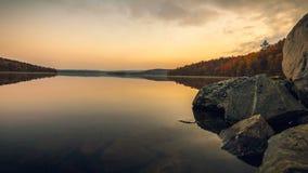 Δασική λίμνη απόθεμα βίντεο