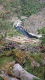 Δασική ξύλινη διάβαση Στοκ Εικόνα