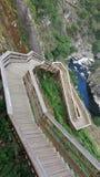 Δασική ξύλινη διάβαση Στοκ φωτογραφία με δικαίωμα ελεύθερης χρήσης