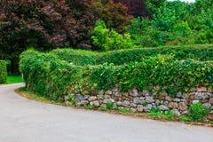 Δασική πορεία με τον παλαιό τοίχο πετρών με το βρύο και τη βλάστηση στοκ φωτογραφίες με δικαίωμα ελεύθερης χρήσης