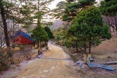 Δασική πορεία με το ναό στην πλευρά από το στη Σεούλ στοκ φωτογραφίες