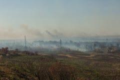Δασική πυρκαγιά Μμένα δέντρα μετά από την πυρκαγιά, ρύπανση στοκ εικόνες