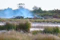 Δασική πυρκαγιά, που προκαλείται από την ξηρασία στοκ φωτογραφίες με δικαίωμα ελεύθερης χρήσης