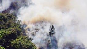 Δασική πυρκαγιά στο βουνό Banos απόθεμα βίντεο
