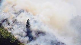 Δασική πυρκαγιά στο βουνό Banos φιλμ μικρού μήκους