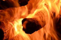 Δασική πυρκαγιά στοκ φωτογραφίες με δικαίωμα ελεύθερης χρήσης