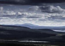 Δασική σκηνή Στοκ φωτογραφίες με δικαίωμα ελεύθερης χρήσης
