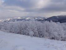 Δασική, χιονώδης άποψη παραμυθιού, το τοπίο στα βουνά Στοκ εικόνα με δικαίωμα ελεύθερης χρήσης