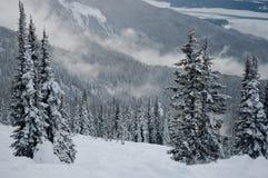 Δασικοί λόφοι στη Βρετανική Κολομβία Στοκ φωτογραφίες με δικαίωμα ελεύθερης χρήσης