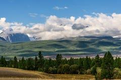 Δασικοί λόφοι σύννεφων βουνών Στοκ Εικόνες
