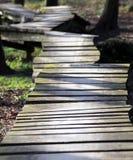 δασικός ανώμαλος ξύλινος μονοπατιών στοκ φωτογραφία με δικαίωμα ελεύθερης χρήσης