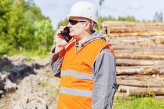 Δασικός ανώτερος υπάλληλος που μιλά στο τηλέφωνο κυττάρων κοντά στο σωρό ξυλείας Στοκ φωτογραφίες με δικαίωμα ελεύθερης χρήσης