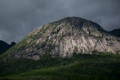 Δασικός απότομος βράχος βουνών στη Νορβηγία Στοκ Εικόνες