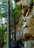 Δασικός απότομος βράχος Στοκ εικόνα με δικαίωμα ελεύθερης χρήσης