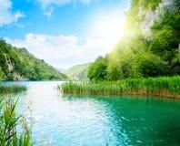 δασικός βράχος λιμνών Στοκ εικόνα με δικαίωμα ελεύθερης χρήσης
