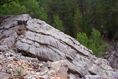 δασικός βράχος Στοκ εικόνα με δικαίωμα ελεύθερης χρήσης