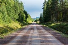 Δασικός δρόμος αμμοχάλικου στην προοπτική Στοκ Εικόνες