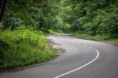 Δασικός δρόμος για ένα αυτοκίνητο και κανένα αυτοκίνητο Στοκ Εικόνα