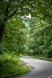Δασικός δρόμος για ένα αυτοκίνητο και κανένα αυτοκίνητο Στοκ Εικόνες