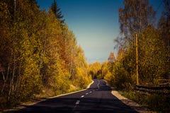 Δασικός δρόμος φθινοπώρου Στοκ εικόνες με δικαίωμα ελεύθερης χρήσης