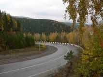 δασικός δρόμος Στοκ εικόνες με δικαίωμα ελεύθερης χρήσης