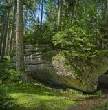 δασικός εθνικός βράχος πά&rh Στοκ Εικόνα