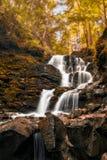 Δασικός καταρράκτης ποταμών Πτώσεις Shepot, Carpathians Στοκ φωτογραφία με δικαίωμα ελεύθερης χρήσης