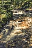 Δασικός καταρράκτης ποταμών Στοκ Φωτογραφίες