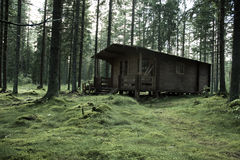 δασικός κυνηγός s καμπινών Στοκ Εικόνες