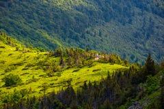 Δασικός λόφος της κορυφογραμμής βουνών στοκ εικόνα με δικαίωμα ελεύθερης χρήσης