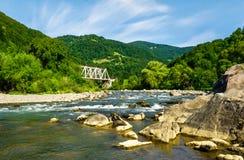 δασικός ποταμός βουνών στοκ εικόνες