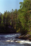 δασικός ποταμός γεφυρών &gamma Στοκ εικόνα με δικαίωμα ελεύθερης χρήσης