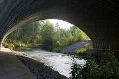 Δασικός ποταμός κάτω από τη γέφυρα Στοκ Εικόνες