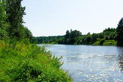 Δασικός ποταμός μια καυτή θερινή ημέρα στοκ φωτογραφία με δικαίωμα ελεύθερης χρήσης