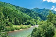 Δασικός ποταμός στα βουνά στοκ φωτογραφία με δικαίωμα ελεύθερης χρήσης