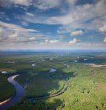Δασικός ποταμός το καλοκαίρι, τοπ άποψη στοκ εικόνα