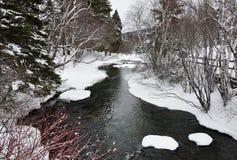 δασικός ποταμός χιονώδης Στοκ φωτογραφία με δικαίωμα ελεύθερης χρήσης