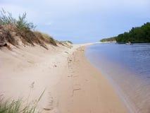 Δασικός ποταμός Στοκ Εικόνα