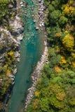 Δασικός ποταμός Στοκ εικόνες με δικαίωμα ελεύθερης χρήσης