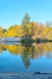 Δασικός ποταμός Στοκ Φωτογραφία