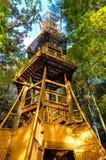 Δασικός προκύπτων πύργος Στοκ Εικόνες