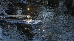 Δασικός ρέοντας όμορφος παγωμένος πάγος ποταμών σε έναν ξηρό κλάδο που ταλαντεύεται, φως του ήλιου, φύση τοπίων έντονου φωτός ήλι Στοκ Εικόνες